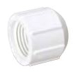 PVC THREADED CAP 3/4