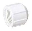 "PVC THREADED CAP 3/4"" #448-007 50/BX"